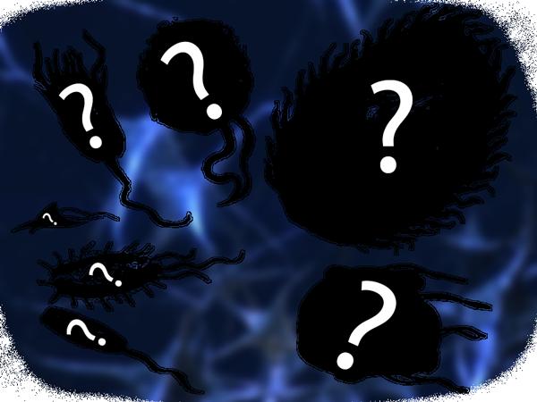 MysteryUnits
